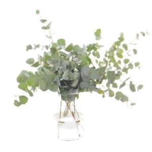 Eucalyptus Bouquet of Flowers Kirkby Lonsdale Florist