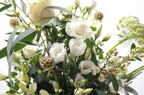 FCWHITE flowerbank florist lancaster