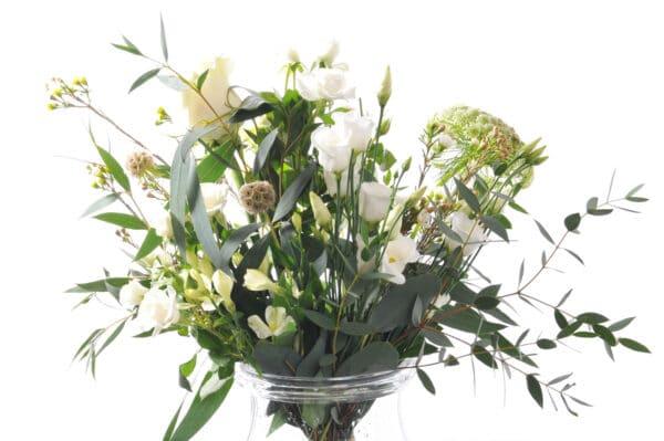 FCWHITE flowerbank florist lancaster 3