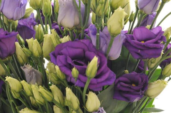 Lisianthus Bouquet of Flowers Kirkby Lonsdale Florist