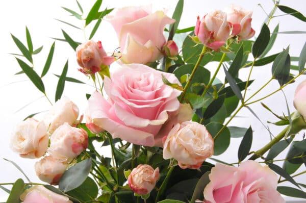 MAID flowerbank florist lancaster