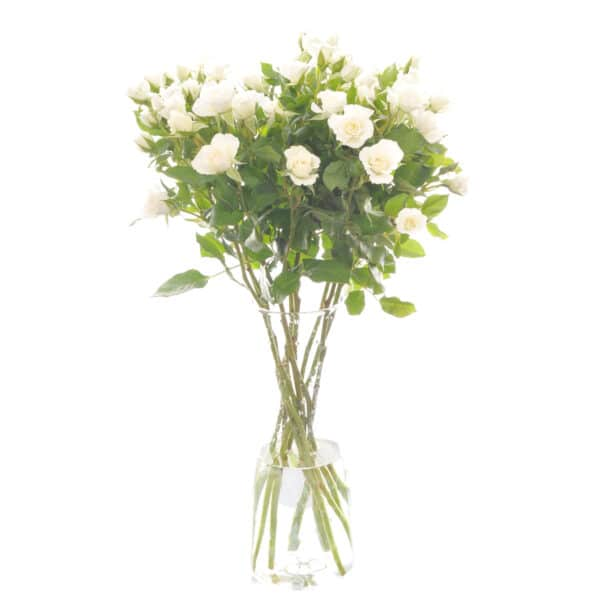 Spray Roses Bouquet of Flowers Kirkby Lonsdale Florist